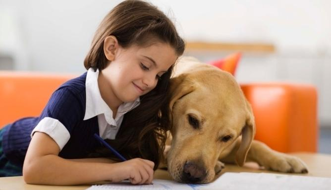 Perros y Letras-3